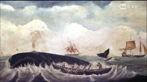 balena immagine