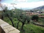 vista da San Donato a San Niccolò connome