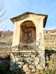 vigne di SanBiagio